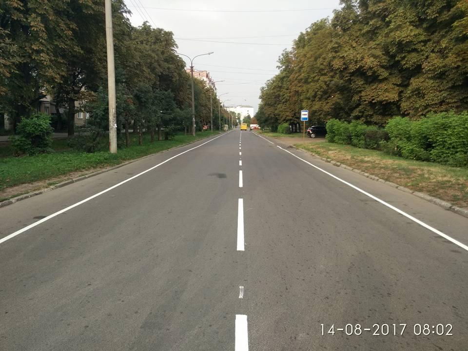 В Івано-Франківську нанесли велосмуги на черговій вулиці. Фото